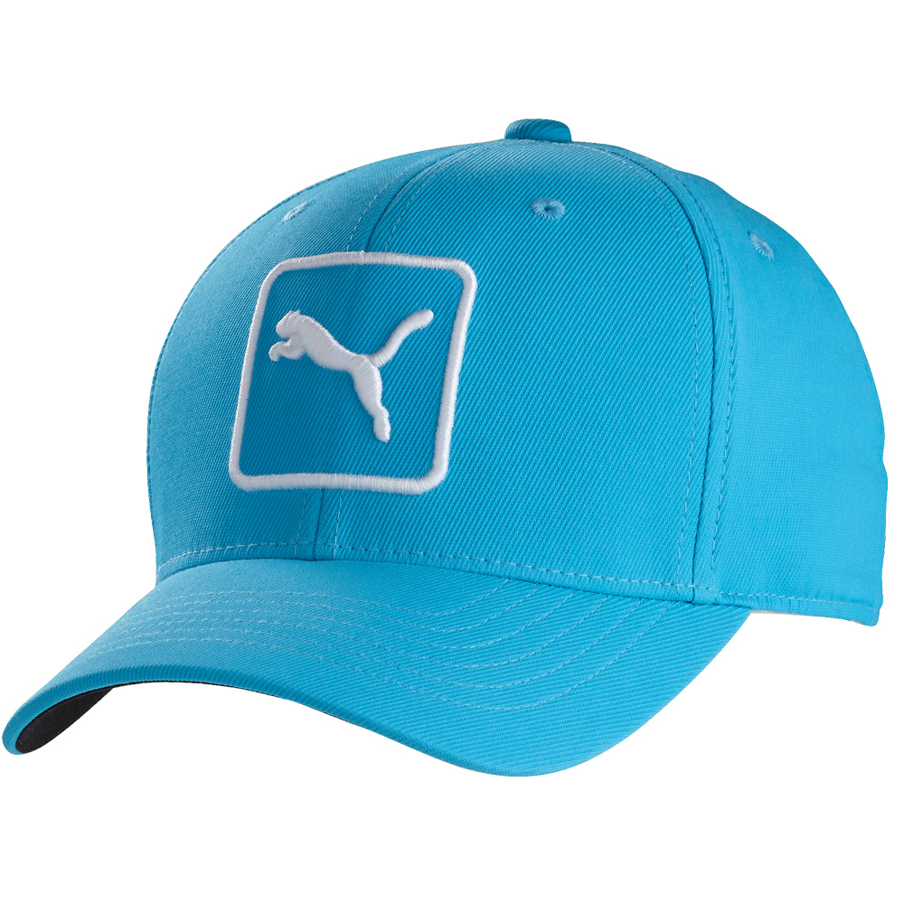 07527b8f4ec Buy puma cap   OFF76% Discounts