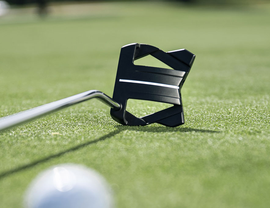 Putter posed next to ball